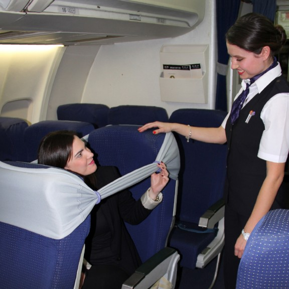 bstrip flight attendant